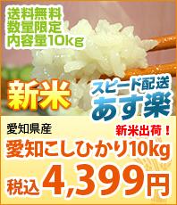 スピード配送あす楽 新米 愛知県産こしひかり10kg