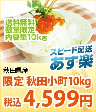 スピード配送あす楽 新米 宮崎県産こしひかり10kg