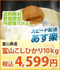 スピード配送あす楽 新米 富山県産こしひかり10kg