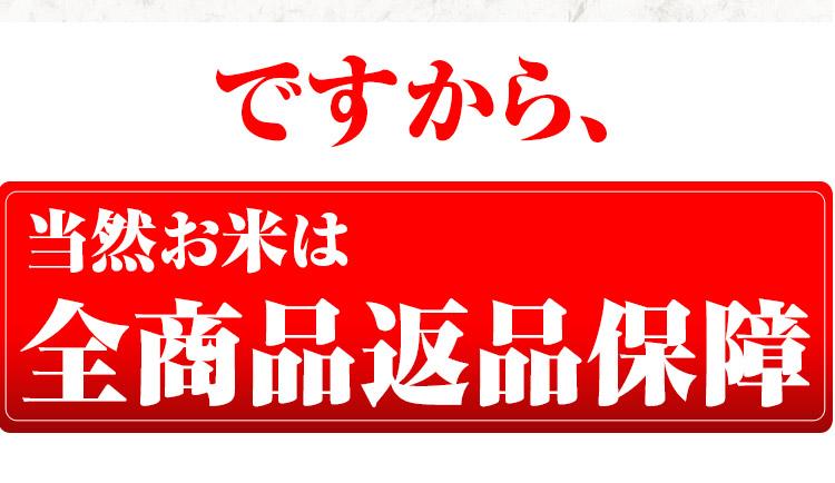 秋田県 選べる精米 1等米 あきたこまち 10kg (選べる包装) 平成25年度産