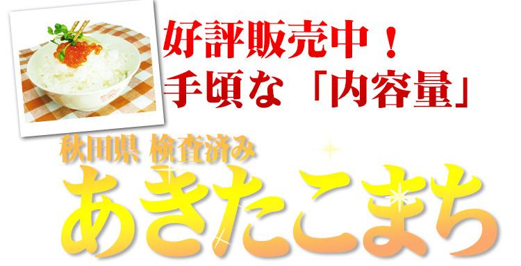 秋田県 選べる精米 1等米 あきたこまち 5kg (選べる包装) 平成25年度産
