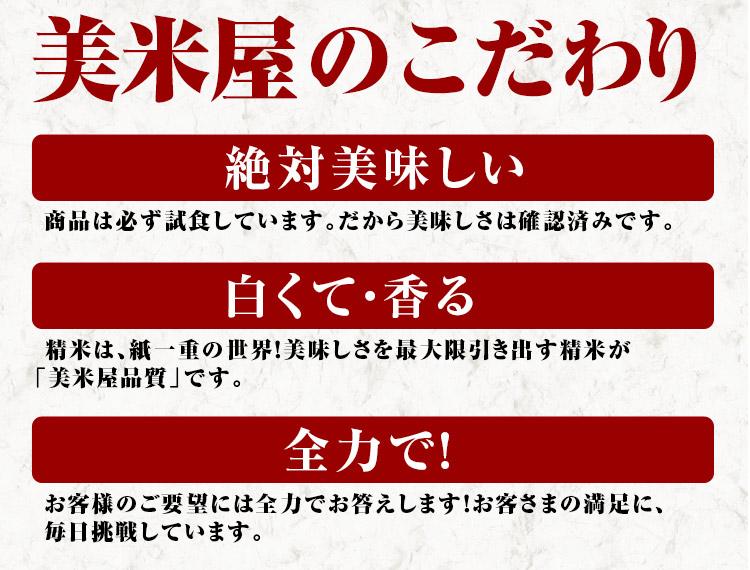 秋田県 無洗米 1等米 あきたこまち 5kg×2袋 平成25年度産