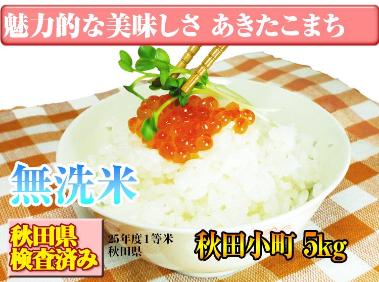 新米出荷 富山県 無洗米 1等米 こしひかり 10kg 平成25年度
