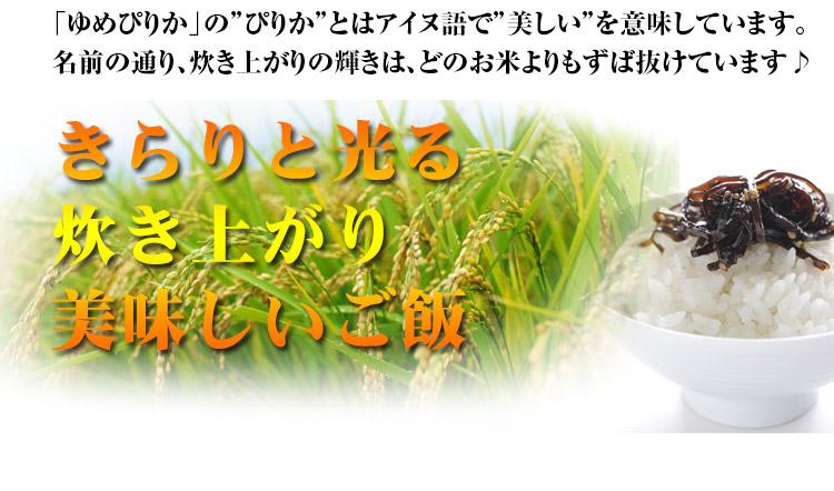 北海道 白米 玄米 1等米 ゆめぴりか 平成25年度