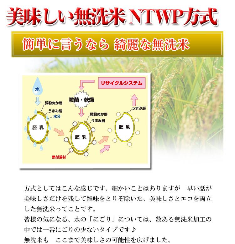 北海道 無洗米 ゆめぴりか 5kg×2袋 平成25年度