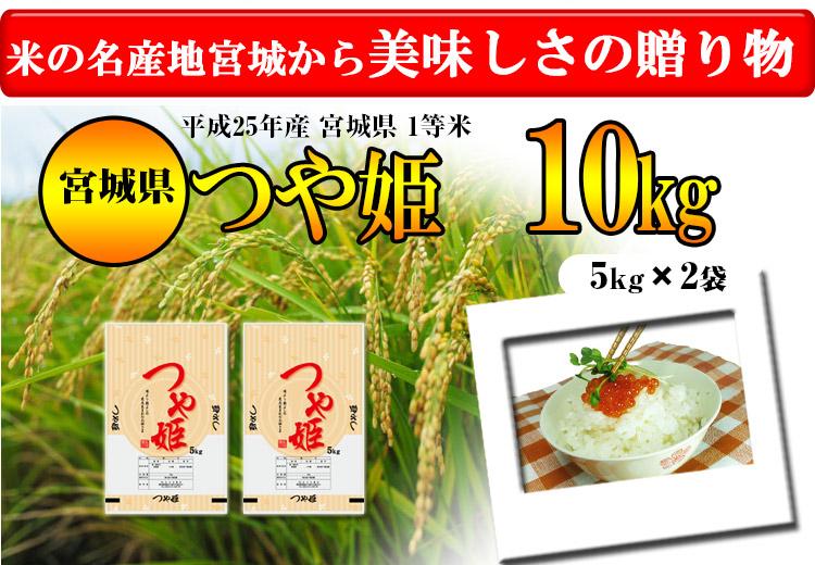 宮城県 白米 つや姫 10kg 平成25年度