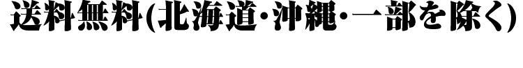 宮城県 無洗米 1等米 つや姫 5kg×2袋 平成25年度産
