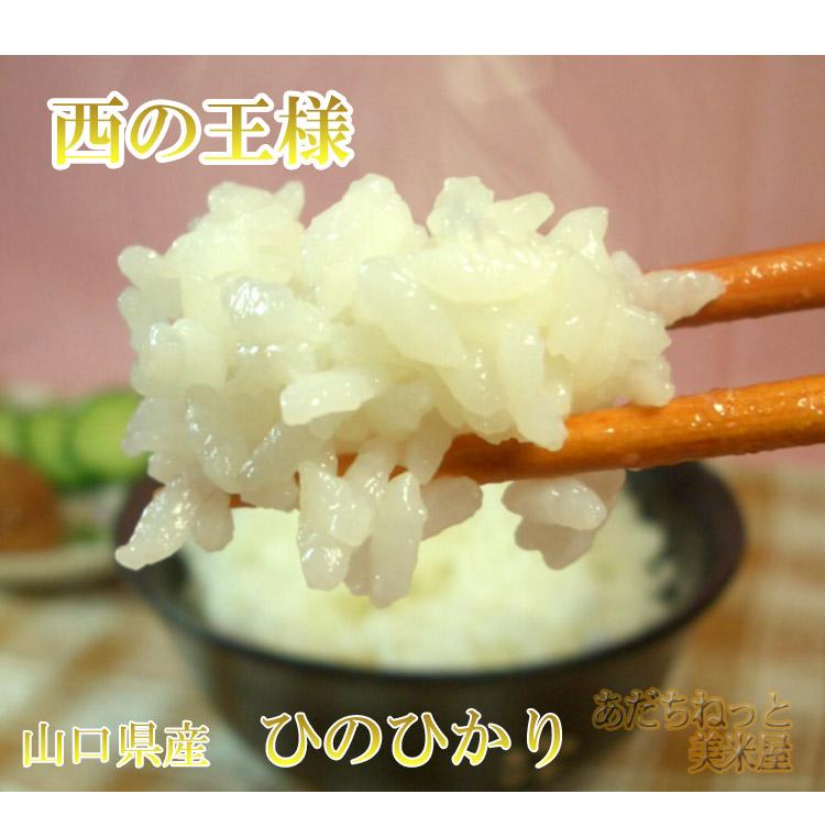 山口県 無洗米 1等米 ひのひかり 5kg×2袋 平成25年度