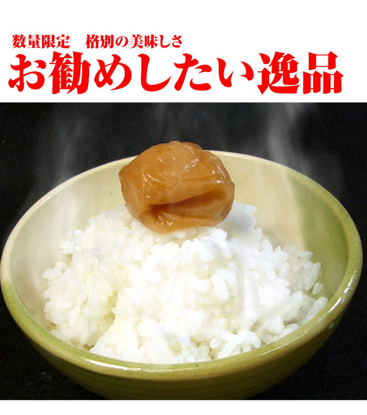 山形県 白米 はえぬき 10kg 平成25年度