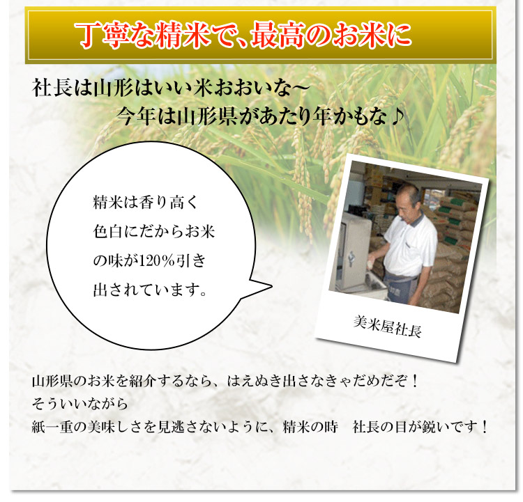 山形県 白米 はえぬき 5kg 平成25年度