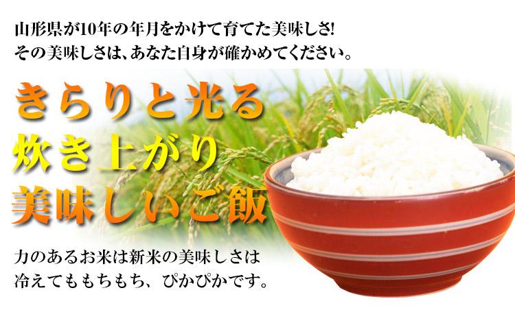 山形県 無洗米 1等米 つや姫 10kg 平成25年度