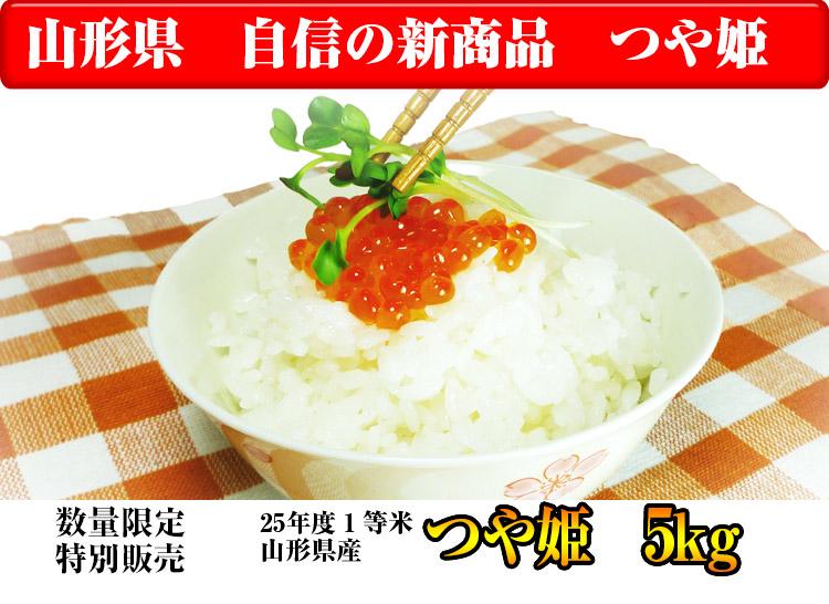 山形県 無洗米 1等米 つや姫 5kg 平成25年度