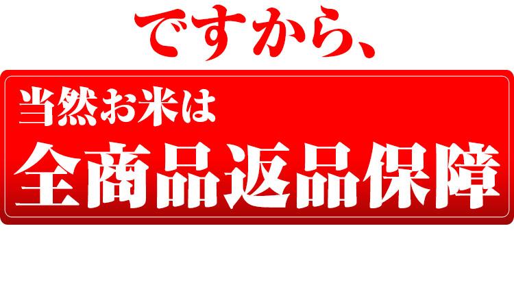 富山県 白米 こしひかり 10kg 平成25年度