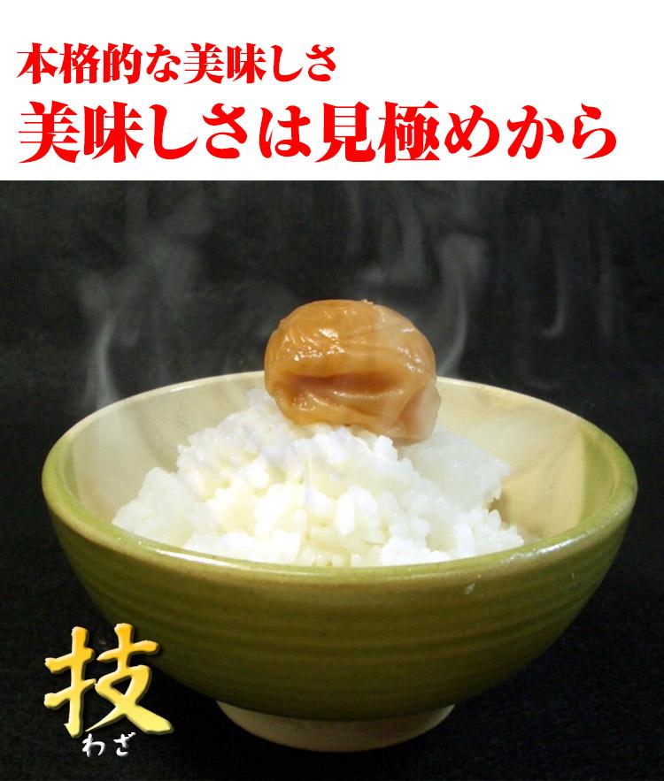 富山県 白米 こしひかり 内容量5kg 平成25年度