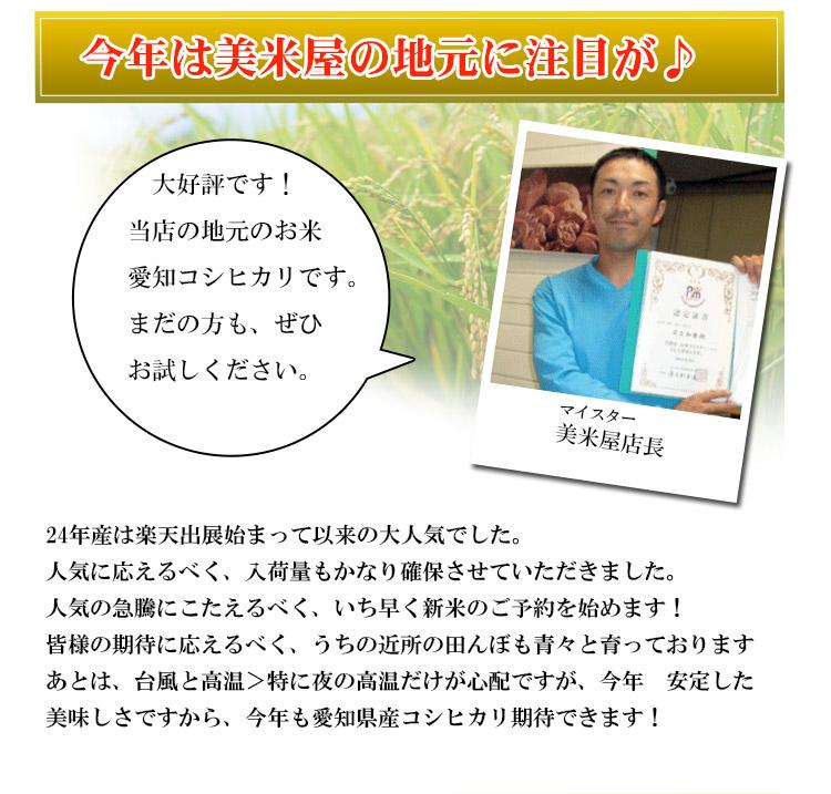 愛知県 白米 こしひかり 10kg 平成25年度