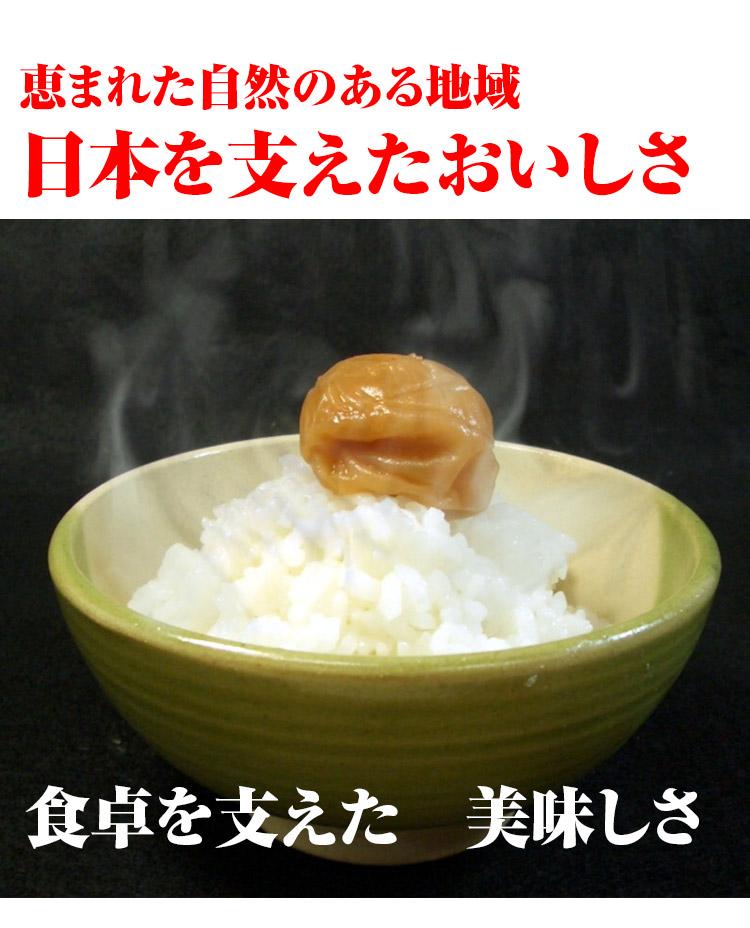 茨城県 白米 こしひかり 白米27kg か玄米30kg 平成25年度