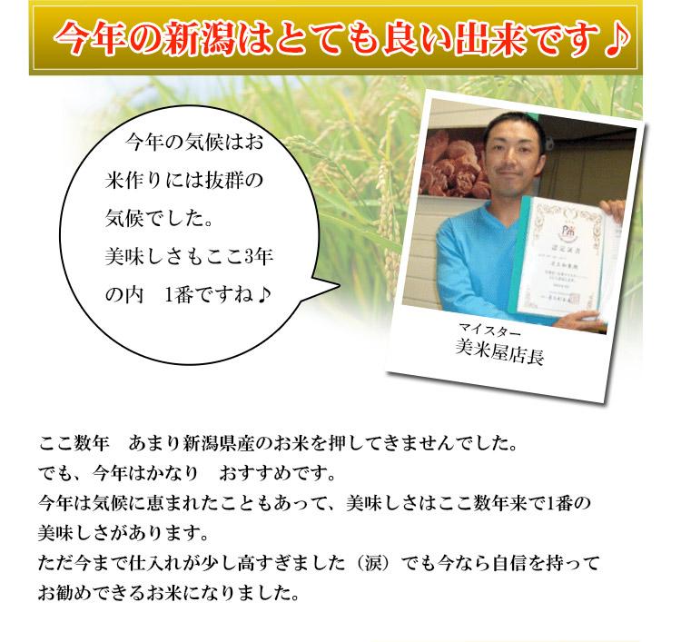 新潟県 白米 こしひかり 10kg 平成25年度