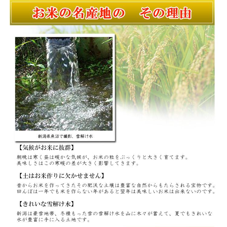 新潟県 白米 こしひかり 内容量5kg 平成25年度