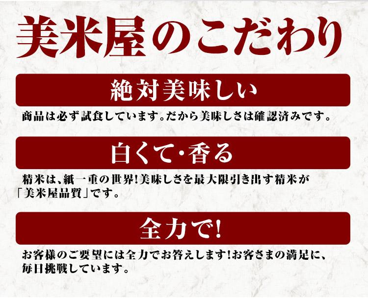 長野県 白米 玄米 1等米 ミルキークイーン 10kg 平成25年度
